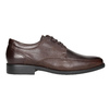 Brown Leather Derby Shoes fluchos, brown , 824-4442 - 26